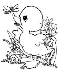 Baby Ducks Coloring Pages