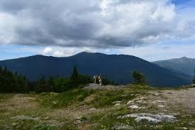 100 Wildcat Ridge Trail To D Summit Appalachian
