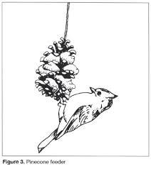 Figure 3 Pinecone Feeder