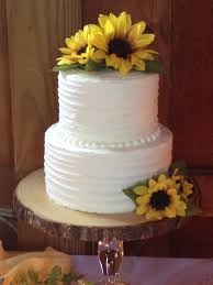 6 8 Chocolate Layer 2 Tier Wedding Cake Rustic Iced In