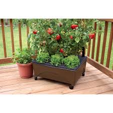 Gronomics Raised Garden Bed by Shop Raised Garden Beds At Lowes Com