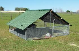 Duck Coop? Cost? | BackYard Chickens New Technologies Available For Cowcalf Producers Hoop Barns Protect Cattle From Heat Iowa Public Radio Chip Shot Cstruction Best 25 Pole Barn Cstruction Ideas On Pinterest Building Barn Consider Deep Pack Cow Comfort And Manure Management 13 Frugal Diy Greenhouse Plans Remodeling Expense Barndominium Prices Day 6 Orazi Feedlot Pork Producer 22 Greenhouses With Great Tutorials Diy Greenhouse