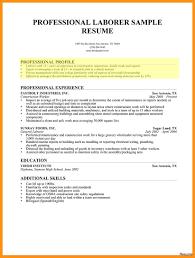 Professional Profile Diagrams Ceo Pay Research Paper Homework Help Writing Meta Resume Sample