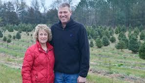 Tannenbaum Christmas Tree Farm Michigan by Christmas Tree Farm Requires Year Round Care News