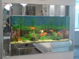 Best Designs Of Aquarium For Homes Photos - Amazing Design Ideas ... Creative Cheap Aquarium Decoration Ideas Home Design Planning Top Best Fish Tank Living Room Amazing Simple Of With In 30 Youtube Ding Table Renovation Beautiful Gallery Interior Feng Shui New Custom Bespoke Designer Tanks 40 2016 Emejing Good Coffee Tables For Making The Mural Wonderful Murals Walls Pics Photos