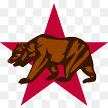 California Republic CLETS Users Group Flag Of Grizzly Bear Sacramento