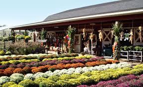 Pumpkin Picking Places In South Jersey by New Jersey Farm Market U0026 Garden Center Nj Farms View Farm