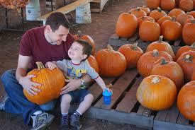 Mission Valley Pumpkin Patch by Ben Vorspan U2013 Encino Real Estate Agent Sherman Oaks Real Estate