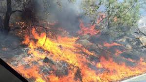 Clovis Ca Pumpkin Patch 2015 by Wildfire North Of Auberry Now 80 Percent Contained Abc30 Com