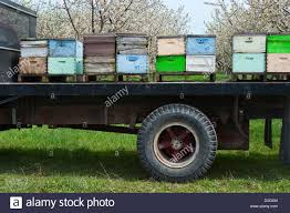 Bee Truck Stock Photos & Bee Truck Stock Images - Alamy Bee Line Trucking Jane Hammond Elite Haul Passionate About Transport Benefits Untitled Beeline Transfer Llc Home Facebook Christopher Schutt Technical Traing Specialist Semi Truck Repair Rv Mobile Washing Belgrade Mt Mcm Tesla Wins 50 Orders For From Middles Easts Beeah Runway Systems John Ross Rolling Cb Interview Youtube American Fleet Services