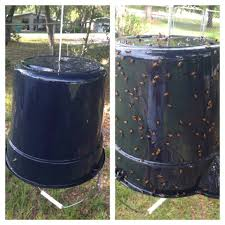 Yellow Fly Catcher Black Bucket And Put STP Motor Oil On Outside ... 7 Tips For Fabulous Backyard Parties Party Time And 100 Flies In Get Rid Of Best 25 How To Control In Your Home Yard Yellow Fly Identify Of Plants That Repel Flies Ideas On Pinterest Bug Ants Mice Spiders Longlegged Beyond Deer Fly Control Pest Chemicals 8008777290 A Us Flag Flew Iraq Now The Backyard Jim Jar O Backyard Chickens To Kill Mosquitoes Mosquito Treatment Picture On And Fascating