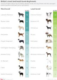 Dog Breeds That Dont Shed Uk by Yougov Revealed Britain U0027s Most And Least Loved Dog Breeds