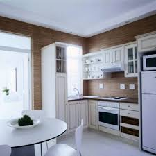 Nice Apartment Kitchen Decorating Ideas On A Budget Minimalist Kitchens With Modern Cabinets