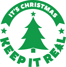 Best Christmas Tree Type For Allergies by Frequently Asked Questions