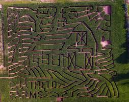 Pumpkin Patch Denver Botanic Gardens by Botanic Gardens Haunted Corn Maze Fasci Garden