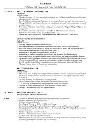 Download Travel Administrator Resume Sample As Image File