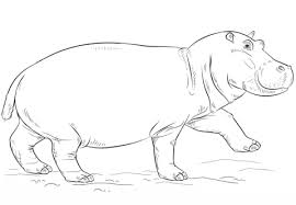 Click To See Printable Version Of Cute Hippo Coloring Page