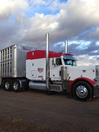 100 Cattle Truck For Sale 1999 Peterbilt 379 For More Information Click On The