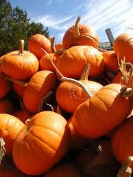 Pumpkin Festival Maine by September 2010