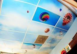 4x8 Ceiling Light Panels by Skypanels U2013 Fluorescent Light Covers
