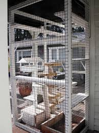 cats on deck 201 best cat enclosures for other animals from catscape