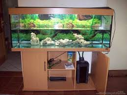 juwel 400 aquarium with many accessories east