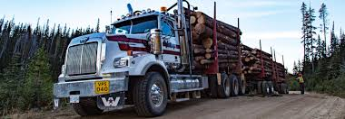 Log Hauling & Trucking Company   Valley Carriers Truck Driver Job In Bensalem Township Pa At Levari Trucking Co Llc Jsg Our Service Makes The Difference May Company Osborn Son Rodes Home Facebook Bowers Oregons Best Coastal Trucking Service Baylor Join Team Texas Inc Linkedin Tazs Six Flags Magic Mountain Youtube Distribution Solutions Arkansas Woody Bogler Geraldmo Decker Line Fort Dodge Ia Review
