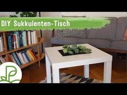 diy anleitung tisch mit sukkulenten bepflanzen ikea hack