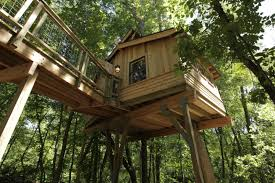 Our Classroom in the Trees – Building the Barrier Free Treehouse