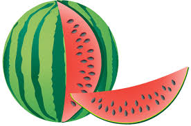 Watermelon clip art free clipart images 2