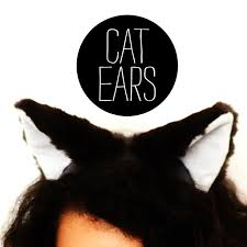 how to make cat ears cat ears make a thing every day