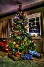 Small Fibre Optic Christmas Trees by Christmas Tree Shop Christmas Lights Decoration
