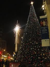 Seattle Christmas Tree Disposal by Substitute For Christmas Tree Home Design Inspirations