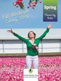 request a copy of our 2017 or summer wholesale catalog