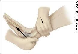 nursing bibs Anterior drawer test