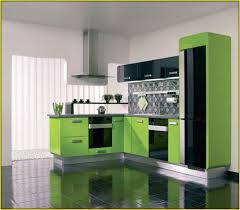 Sage Colored Kitchen Cabinets by Sage Green Kitchen Cabinets Home Design Ideas