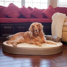 Top Rated Orthopedic Dog Beds by Orthopedic Dog Beds With Bolster Home Beds Decoration