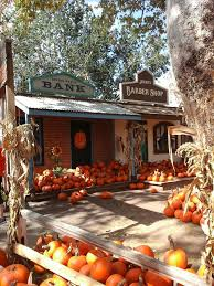Pumpkin Patch Power Rd Mesa Az by 250 Best Californ I A Arizona And Nevada Images On Pinterest