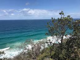 100 Mount Tinbeerwah 9 Things To Do In Noosa Queensland Macaw Wings