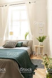 grüne decke auf dem bett neben tisch mit pflanzen im schlafzimmer innenraum mit vorhänge am fenster echtes foto stockfoto und mehr bilder bett