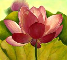 Beautiful Nature Grayscale Coloring Book Lotus Flower