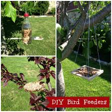 Cub Scouts: Bird Feeders For Kids To Make | Cub Scout Ideas Some Ways To Keep Our Backyard Birds Healthy Birds In The These Upcycled Diy Bird Feeders Are Perfect Addition Your Two American Goldfinches Perch On A Bird Feeder Eating Top 10 Backyard Feeding Mistakes Feeder Young Blue Jay First Time Youtube With Stock Photo Image 15090788 Birdfeeding 101 Lover 6 Tips For Heritage Farm Gardenlong Food Haing From A Tree Gallery13 At Chickadee Gardens Visitors North Andover Ma
