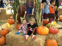 Monrovia Pumpkin Patch by Pumpkin Festival Planned This Weekend In Pasadena U2013 Pasadena Star News