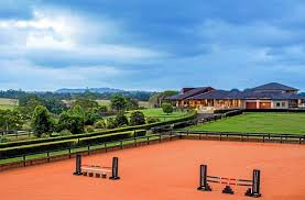 100 Tree Houses Maleny Neds Bookie Punting His 7m Mansion Sunshine Coast