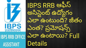 IBPS RRB fice Assistant Job Work Salary Pramotions