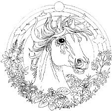Animal Mandala Coloring Pages