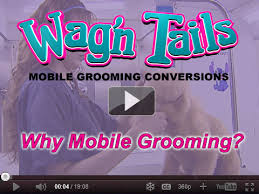 mobile cat grooming wag n tails mobile grooming conversions cat pet