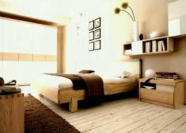 Apartment Bedroom Storage Ideas Small Closet Loft Bed LIVINGROOM