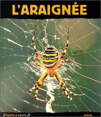 fr l araignée fée de la soie vallet rémy