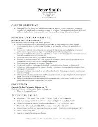 Resume Websites Examples This Is Web Developer Example Freelance
